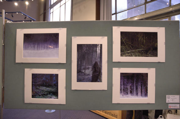 my panel at Photo 2007 exhibition at Fairfield Halls in Croydon